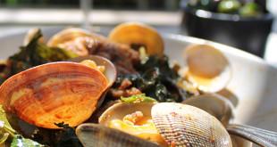 Hog Island Manila clams