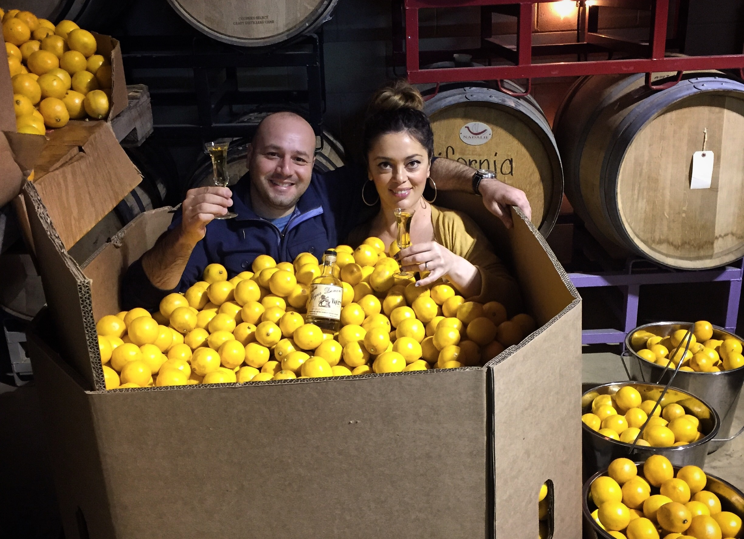 Napa Valley Distillery Meyer lemons