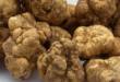 OCWM truffles