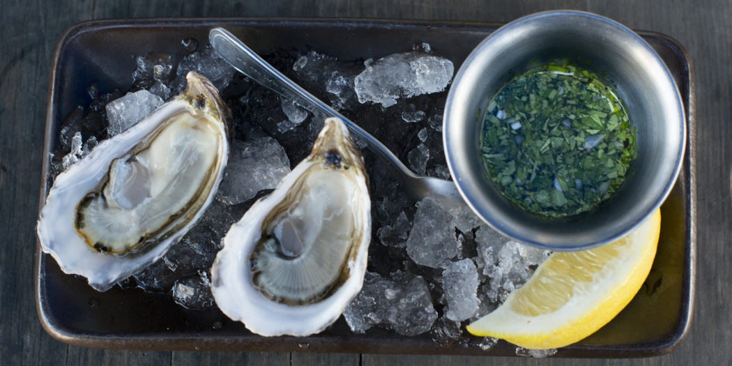 Hog Island Oyster Bar<br>A casual and relaxed oyster haven
