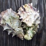 Hog Island oysters for Valentine's